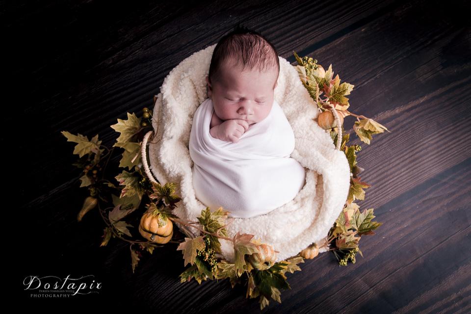 babyfotos babyfotograf neugeborenenfotos neugeborenenfotograf neugeborene shooting fotograf fotos babygalerie nürnberg fürth erlangen zirndorf cadolzburg feucht babys